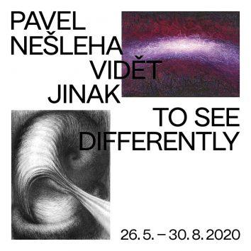 PAVEL NEŠLEHA / Vidět jinak